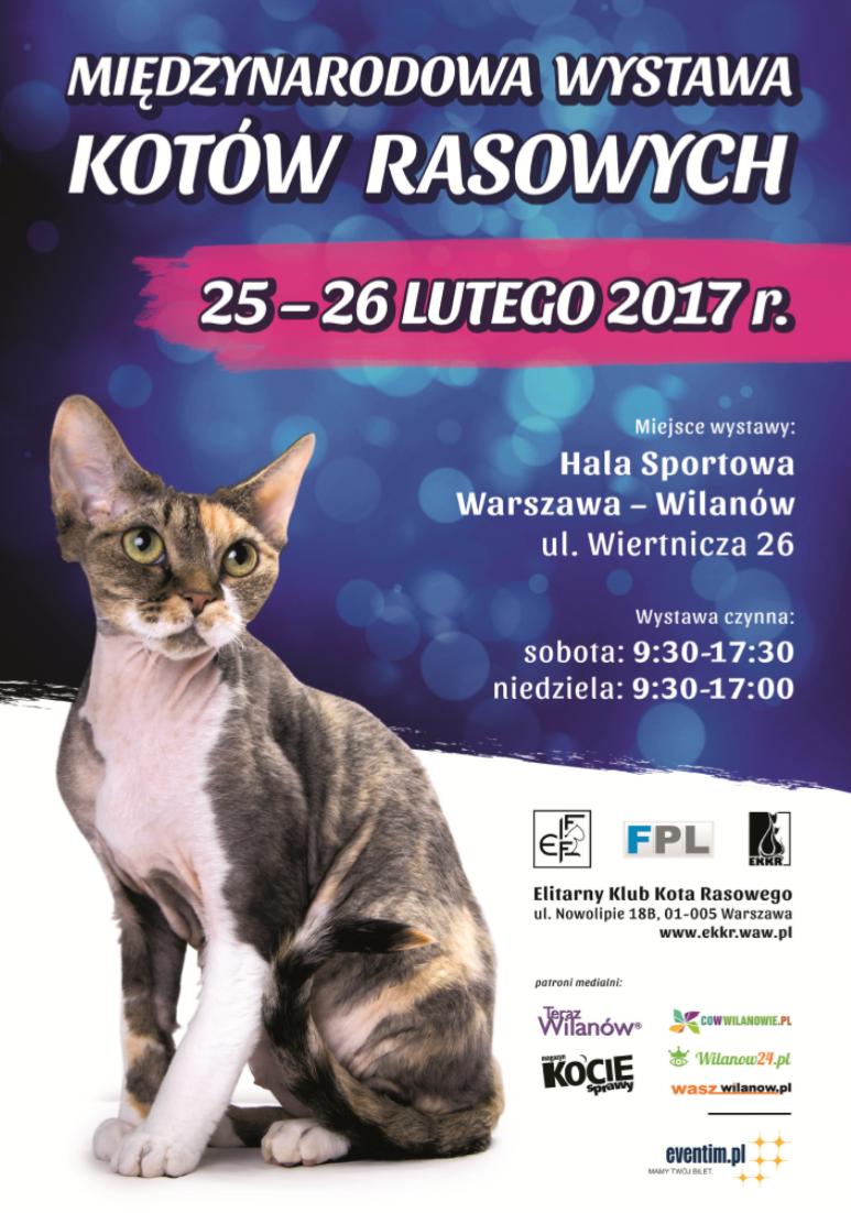 wystawa_kotow_rasowych_2017